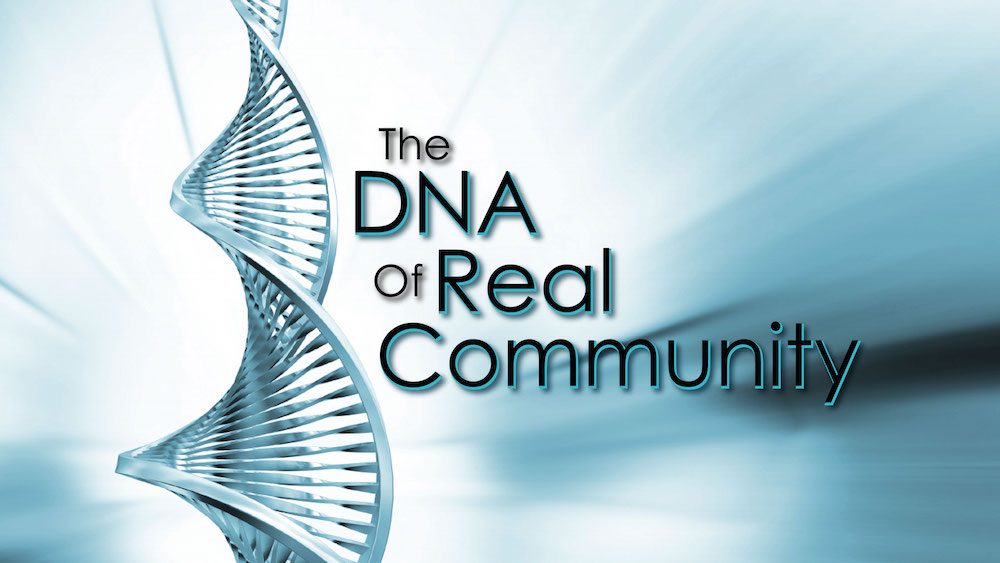 The DNA of Real Community